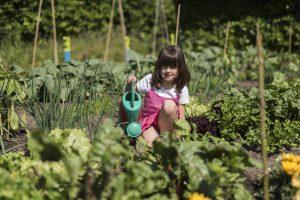 Meisje geeft groenten water